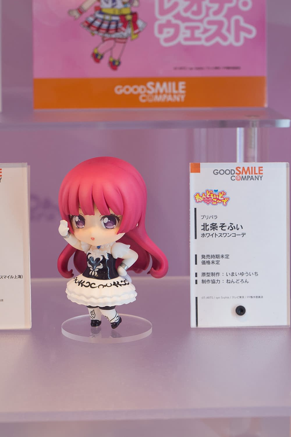 The Ultimate Wonfes 2015 Winter Coverage | Part 5 (10)