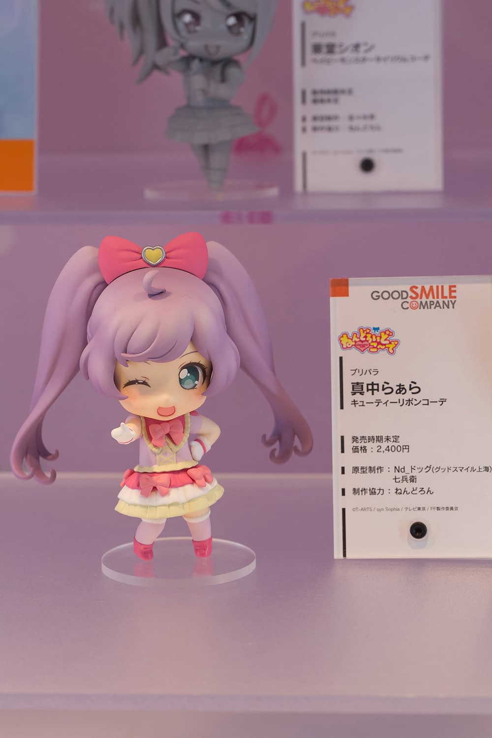 The Ultimate Wonfes 2015 Winter Coverage   Part 8 (10)