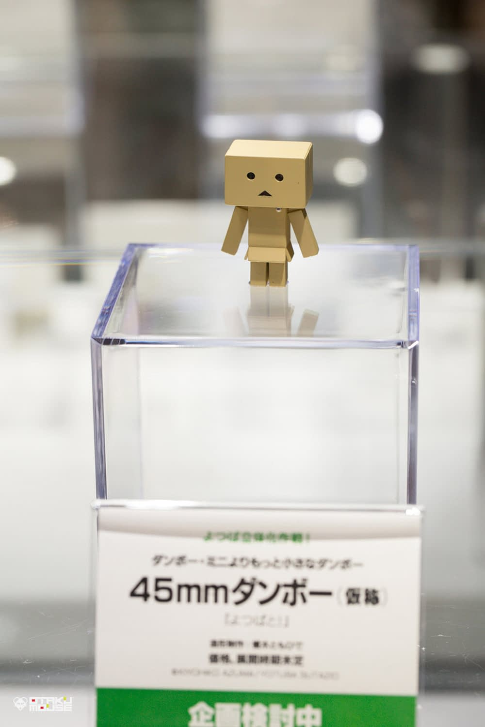 The Ultimate Wonfes 2014 Summer Coverage [Corporate Booth]   Part 10 (14)